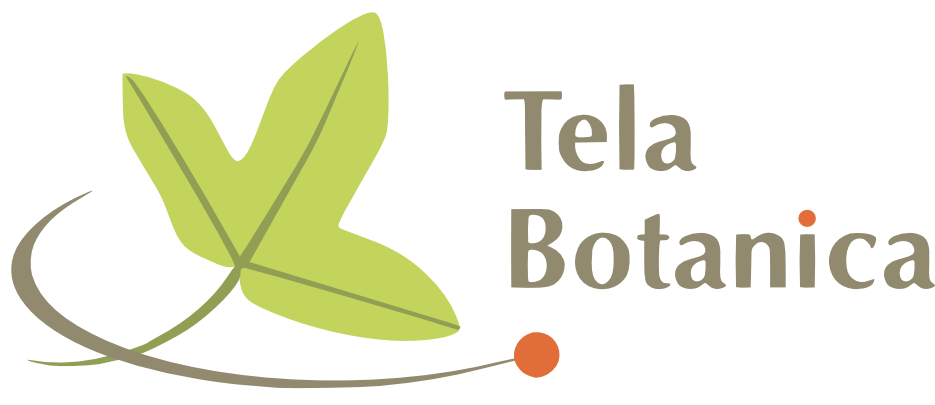 logo_tela_horiz_taupe_duoverts_orange